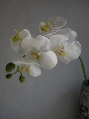 Orkide konstgjord snittblomma