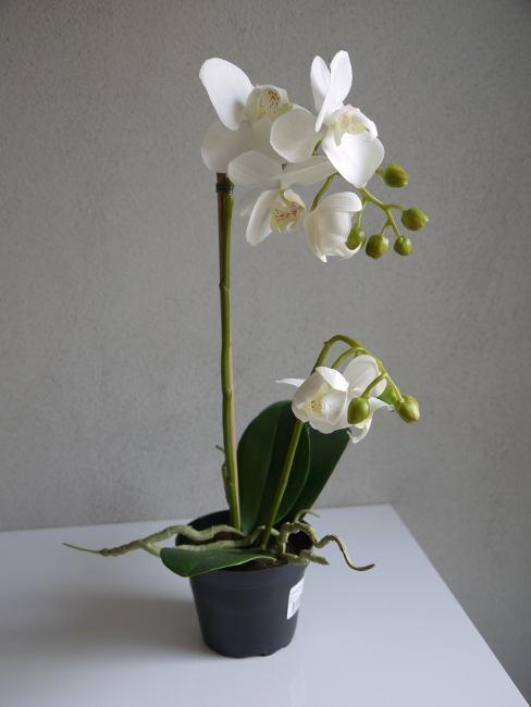 konsgjord vit orkide