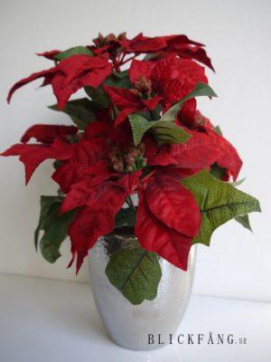 Röd konstgjord julstjärna. Besök blickfång.se