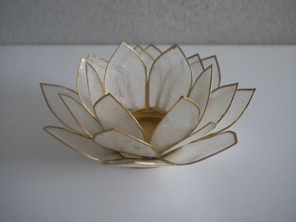 krämfärgad lotuslykta