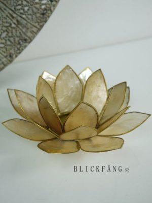 Lotuslykta gyllene guld