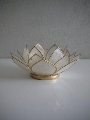 Krämfärgad lotuslykta med guldkant
