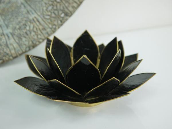 lotuslykta-svart