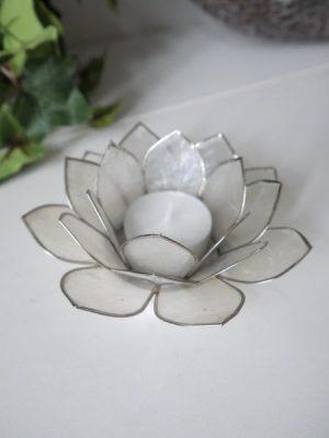 Lotuslykta vit med silverkant