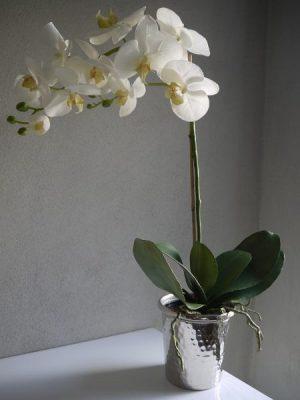 Stor vit konstgjord orkide i innerkruka