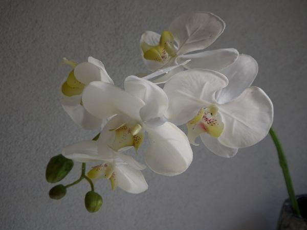 orkide stjälk konstgjord