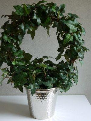 Stor naturtrogen konstgjord murgröna på båge. Besök Blickfång.se