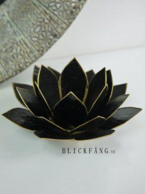 Lotuslykta svart och guld