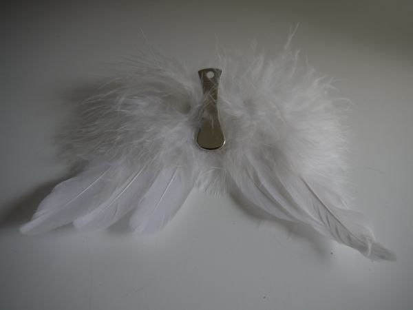 vingar vita fjädrar