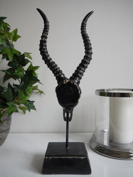djurskalle-svart