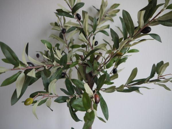 oliv konstgjord