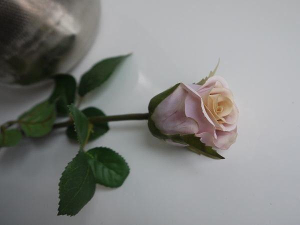 ros-rosa
