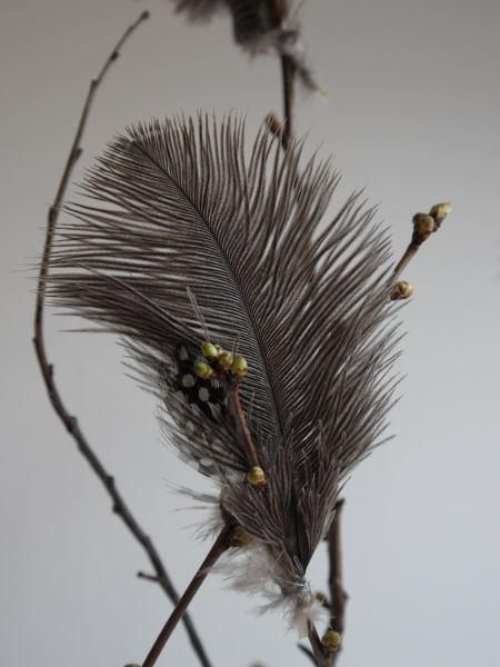 fjädrar påskris bruna