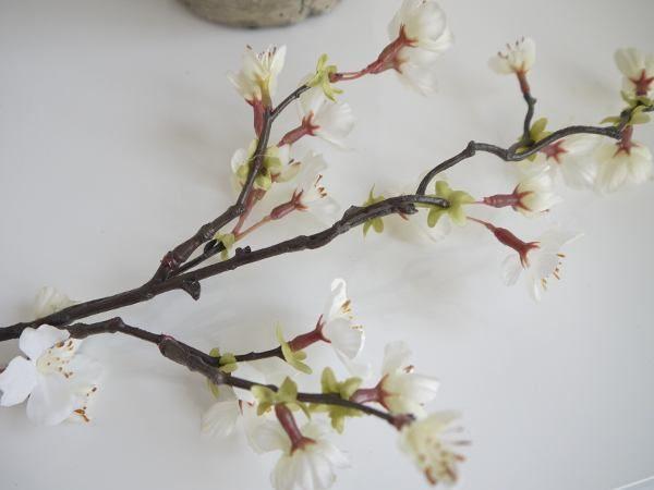 körsbärskvist vit