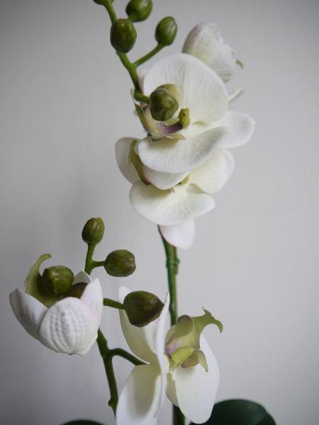 orkide-konstgjord