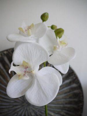Konstgjord vit orkidé stängel