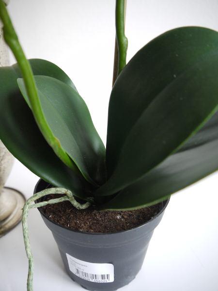 Konstgjord-orkidé-i-kruka-3