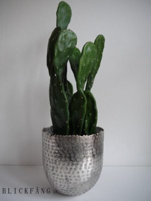 Naturtrogen konstgjord kaktus