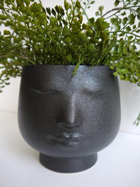kruka-svart-huvud