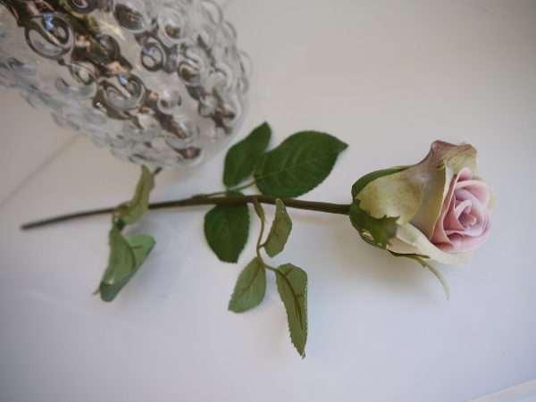 gammalrosa-ros