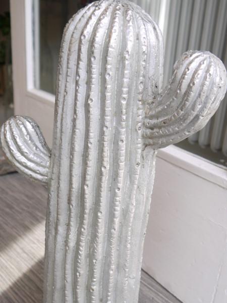 kaktus silver