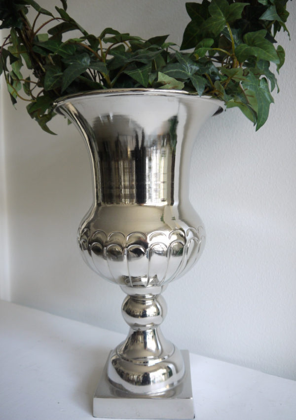 Blank-silverkruka-pa-fot-1