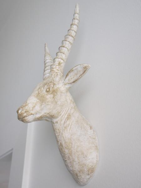 Hjort-vaggtrofé-vit-guld