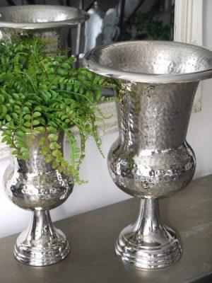 Hamrad silverkruka pa fot