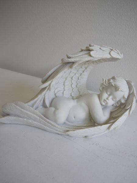 P1320845-sovande-angel-i-vinge