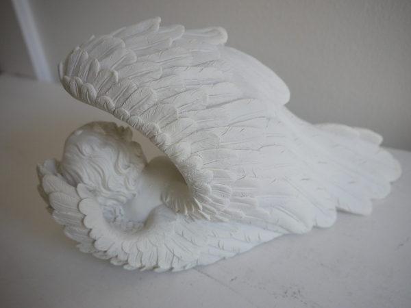 P1320846-sovande-angel-i-vinge