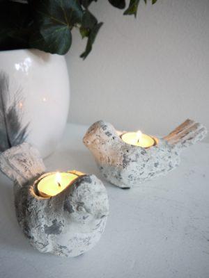 Fagel till ljus i cement