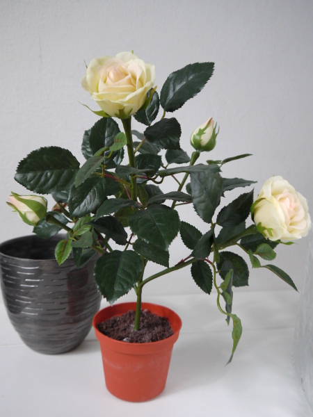 P1200481-konstgjord-ros