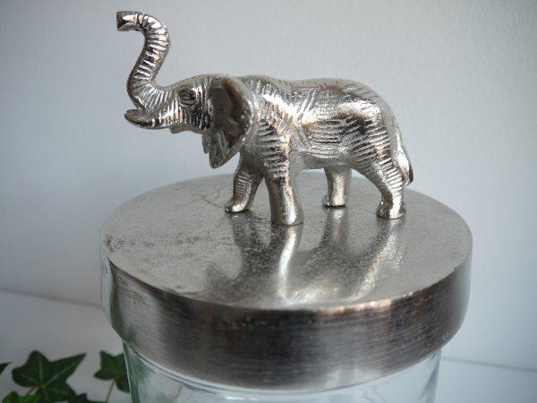 P1220259-glasburk-elefant