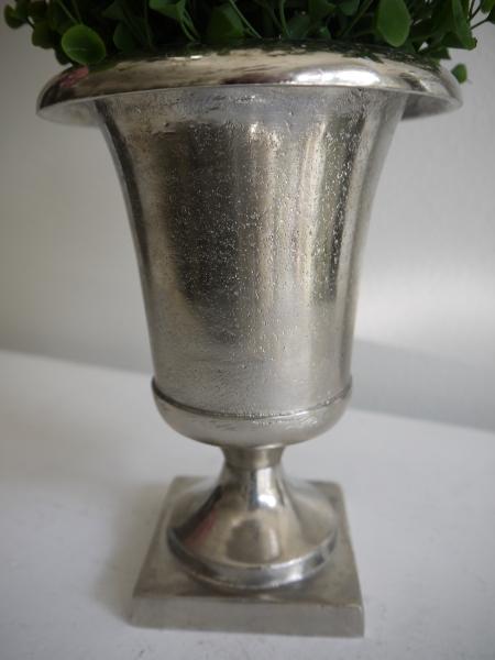 P1330101-kruka-pa-fot
