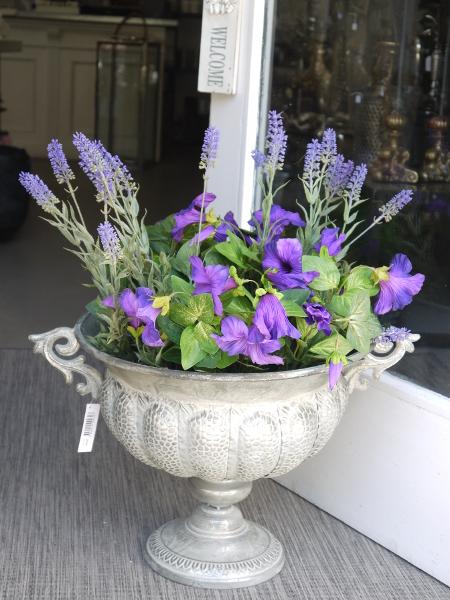 P1330246-petunia-lavendel
