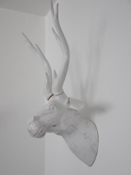 hjorttrofe2