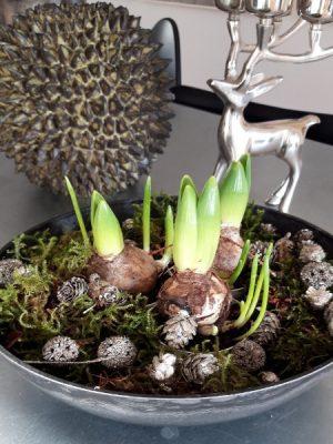 Rund mörkgrå planteringsskål. Besök blickfång.se