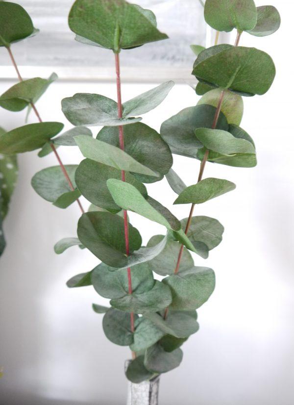 Konstgjord-eucalyptus-kvist-1