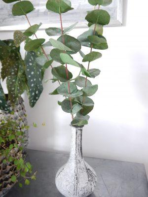 Konstgjord eucalyptus kvist