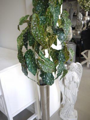 Konstgjord forell begonia grön kvist