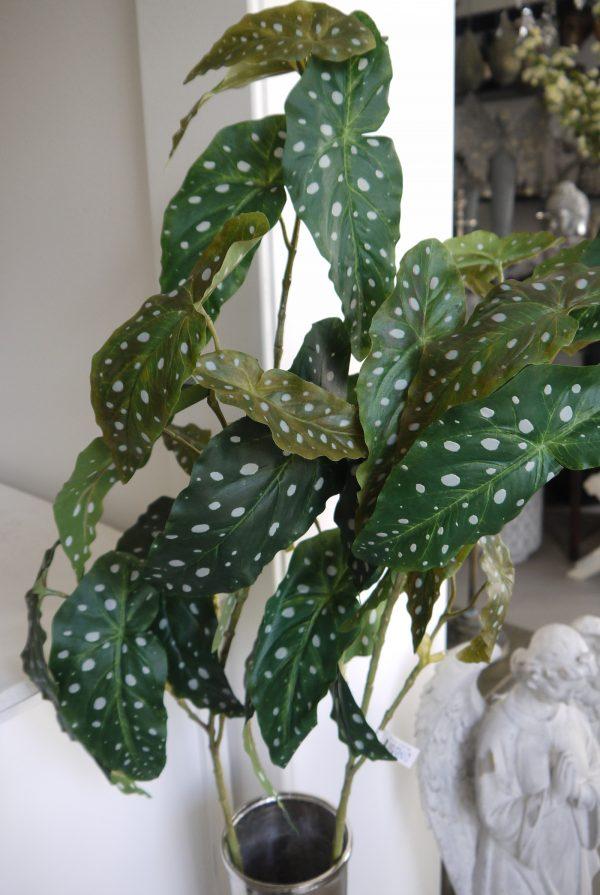 Konstgjord-forell-begonia-gron-kvist-3