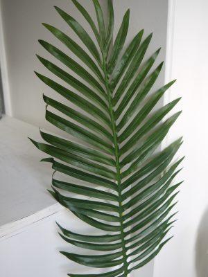Konstgjort palmblad