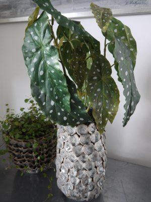 Konstgjord växt forell begonia