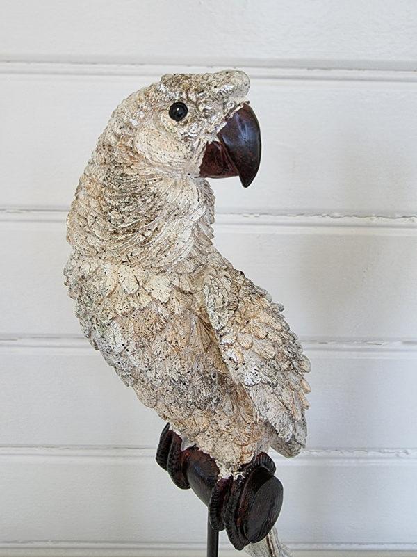 papegoja-pa-stativ-1