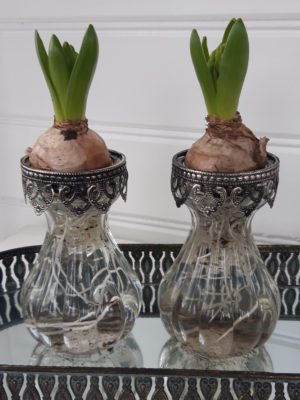 Hyacintvas i glas med spetskant. Besök Blickfång.se