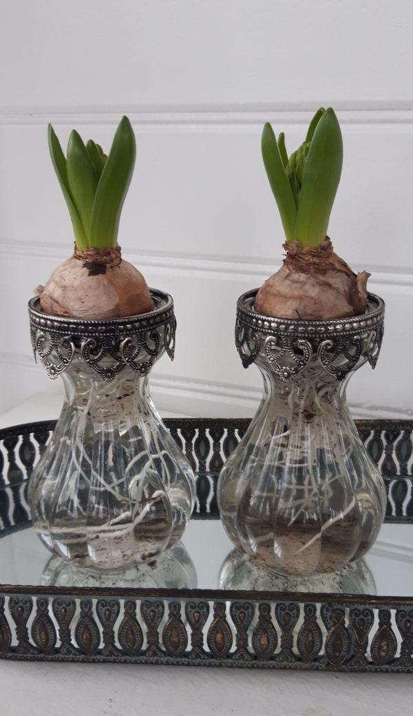 Hyacintvas-i-glas-med-spetskant-3