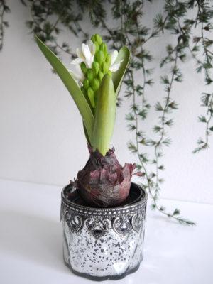 Konstgjord vit hyacint. Besök Blickfång.se