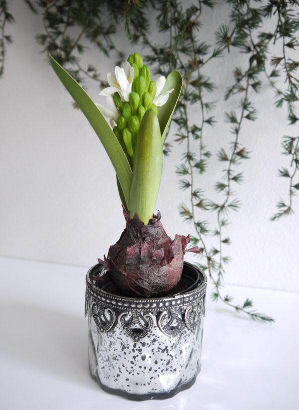 Konstgjord-vit-hyacint
