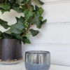 Ljuslykta blå silver glittrig. Besök blickfång.se