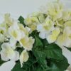 konstgjord-liten-vit-hortensia-2